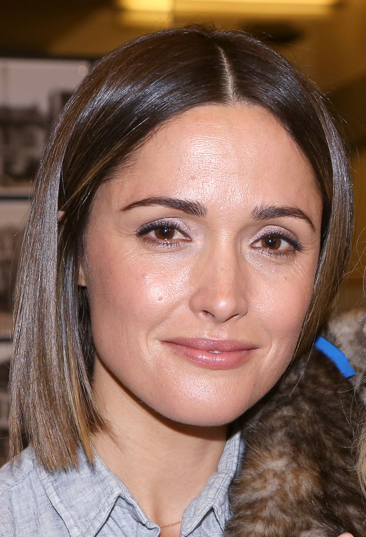 Rose Byrne You Can T Take It With You Kitten Auditions