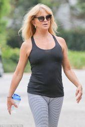 Goldie Hawn in Leggings - September 2014