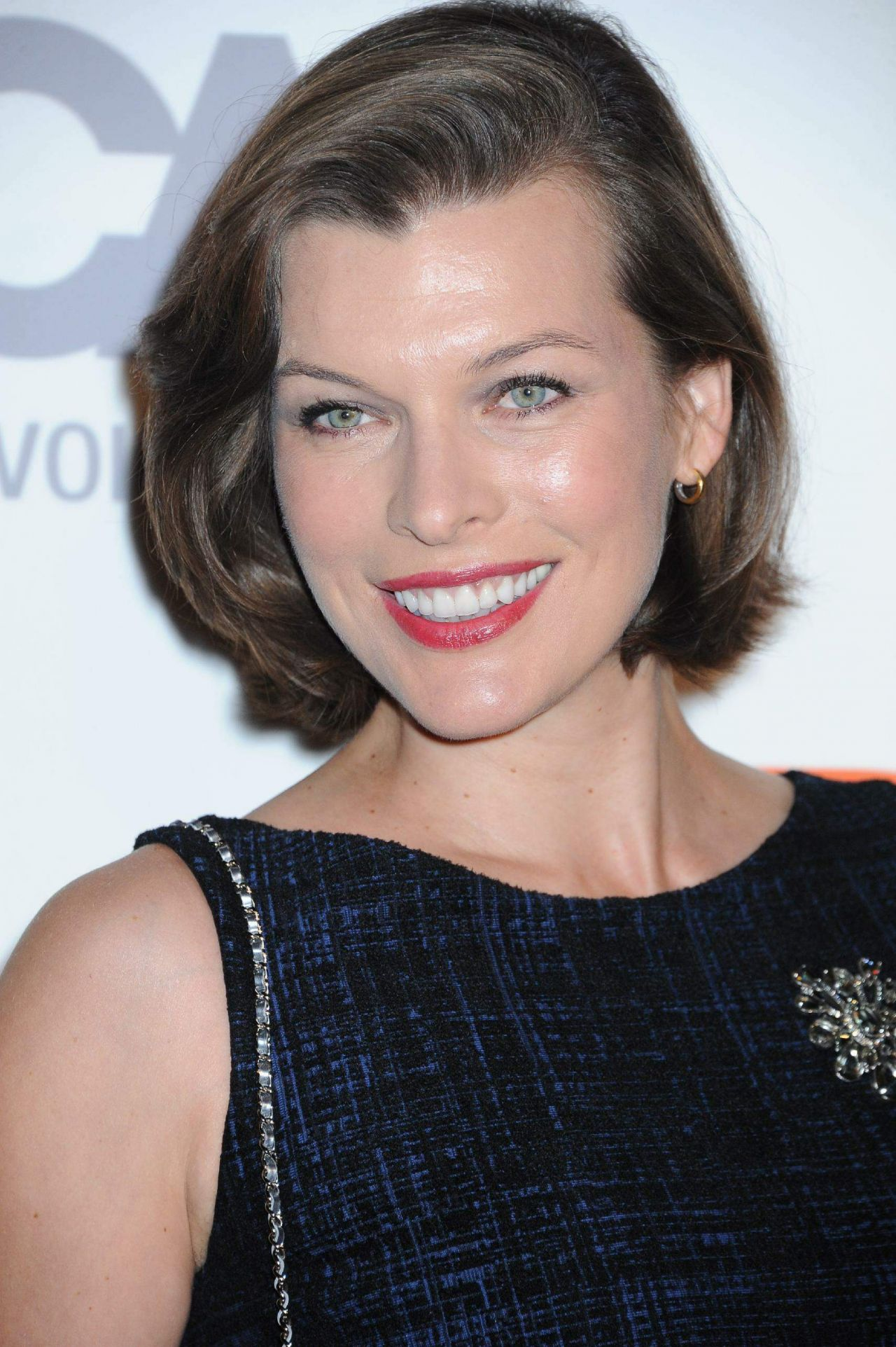 Milla Jovovich  U2013 2014 Aaspca Passion Awards Coctail Party