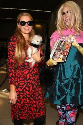 Paris Hilton Arriving on a Flight at LAX Airport in Los Angeles - October 2014