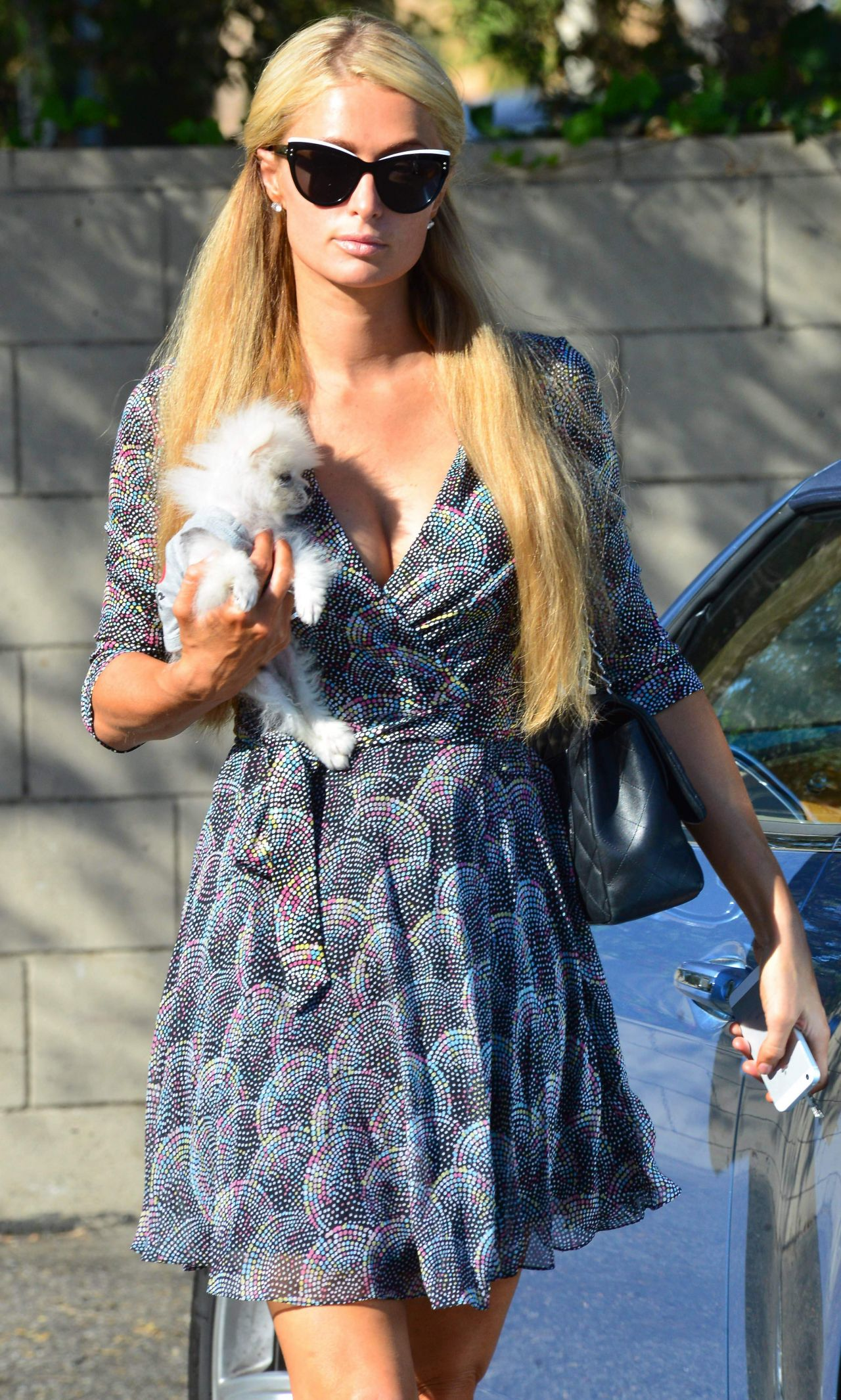 Paris Hilton With Her Dog Prince Hilton - October 2014