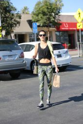 Alessandra Ambrosio Street Style - Out in Los Angeles, November 2014
