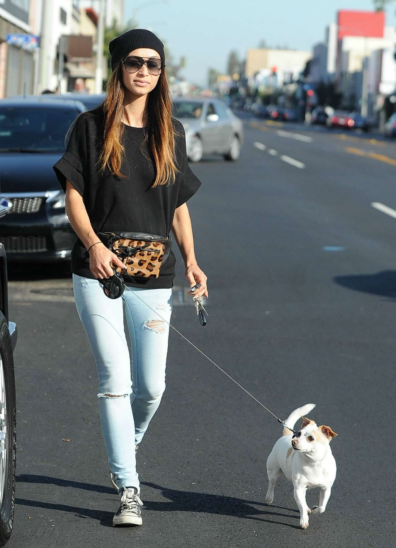 Cara Santana Walking Her Dog - Out in West Hollywood - November 2014