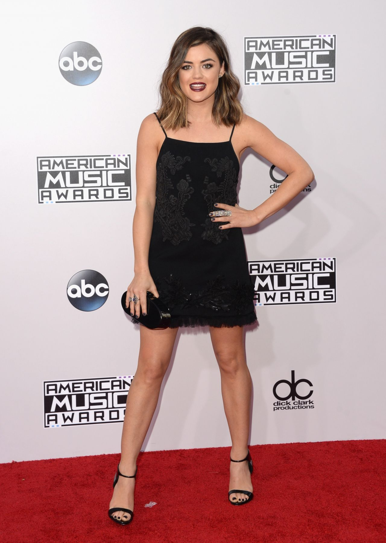 Lucy Hale 2014 American Music Awards In Los Angeles