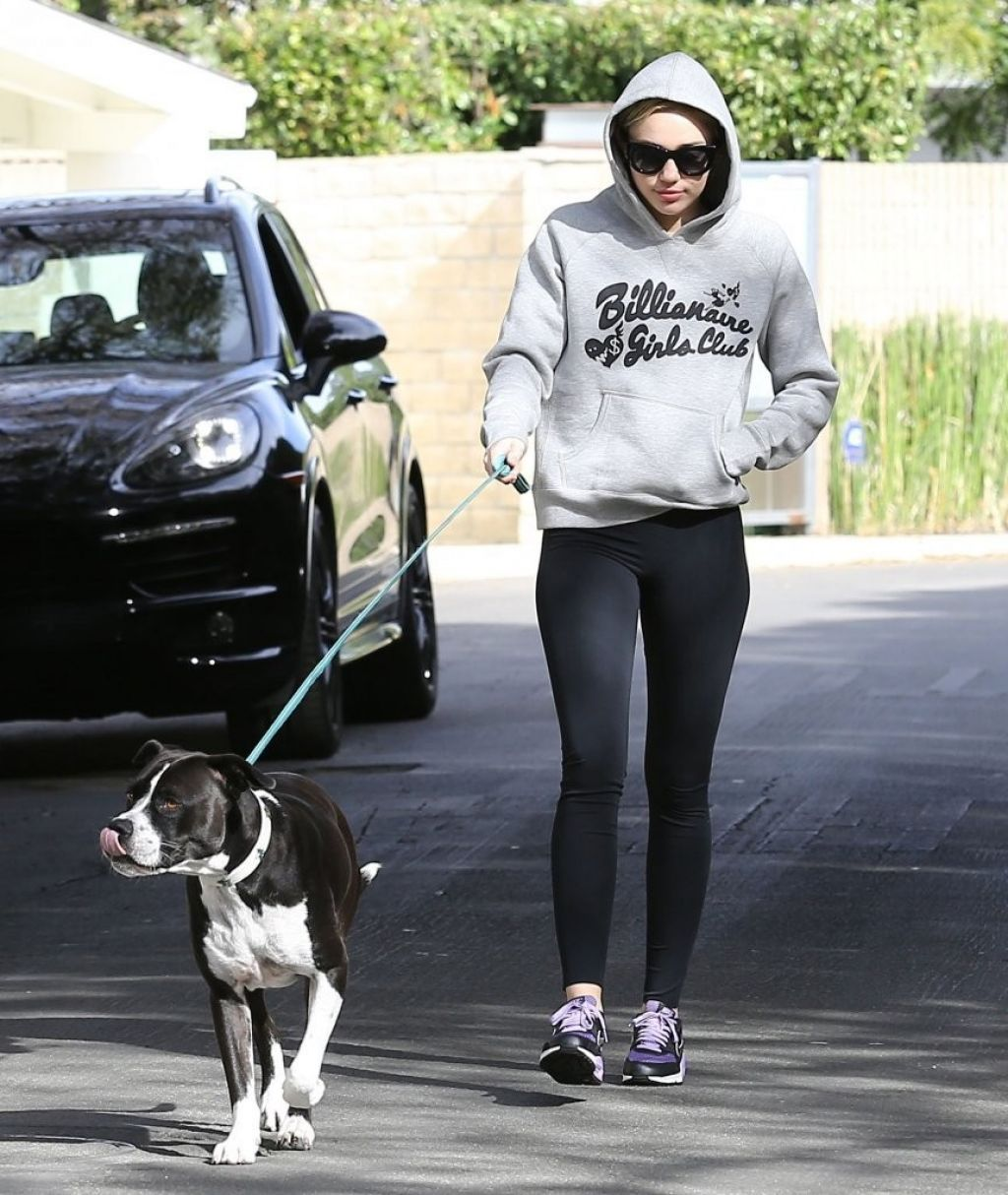Miley Cyrus in Leggings - Walking Her Dog in LA - November 2014