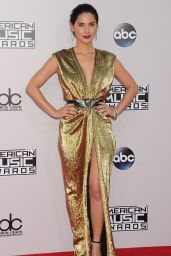 Olivia Munn on Red Carpet - 2014 American Music Awards in Los Angeles