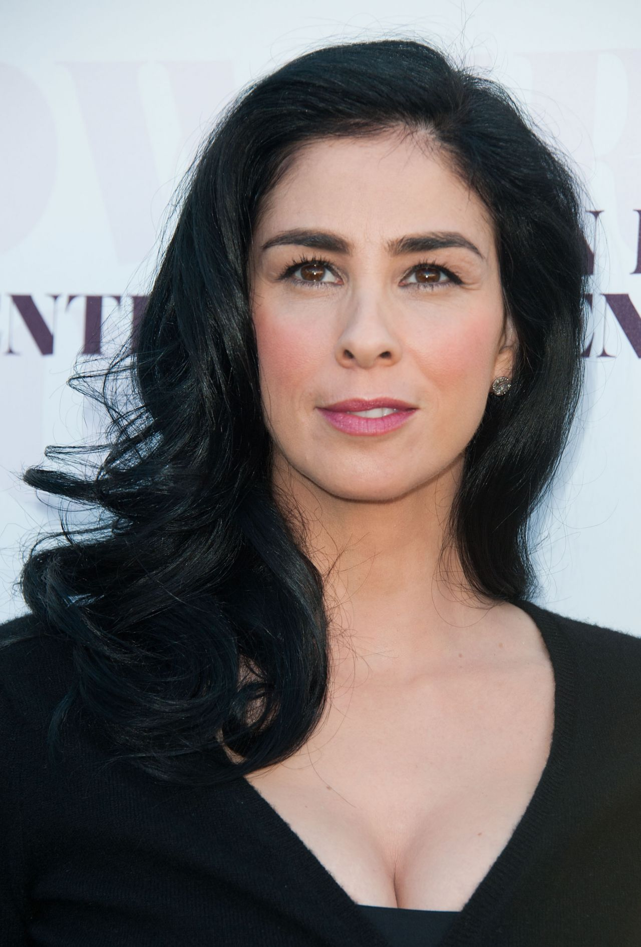 Sarah Silverman – 2014 The Hollywood Reporter's Women In ...
