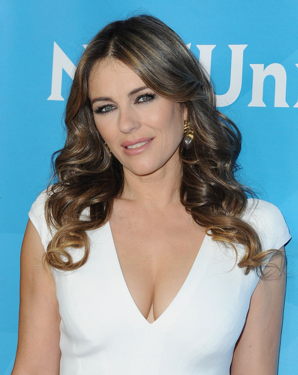 Elizabeth Hurley Nbcuniversal S 2015 Winter Tca Tour