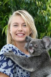Maria Sharapova - Poses With a Koala Named