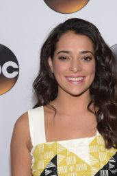 Natalie Martinez – Disney & ABC Television Group's TCA Winter Press Tour in Pasadena, Jan. 2015