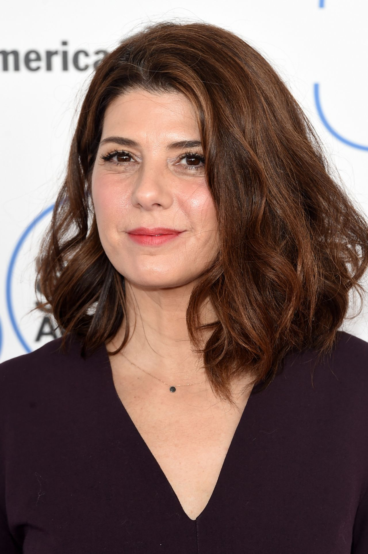http://celebmafia.com/wp-content/uploads/2015/02/marisa-tomei-2015-film-independent-spirit-awards-in-santa-monica_1.jpg