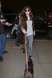 Dakota Johnson Street Style - at LAX Airport, March 2015