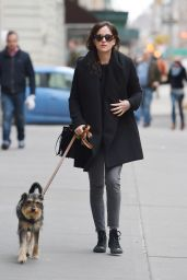 Dakota Johnson Walks Her Dog in New York City, March 2015