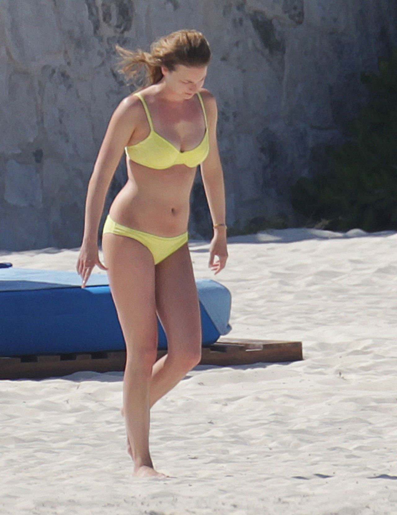 Emily VanCamp Hot & Sexy Bikini