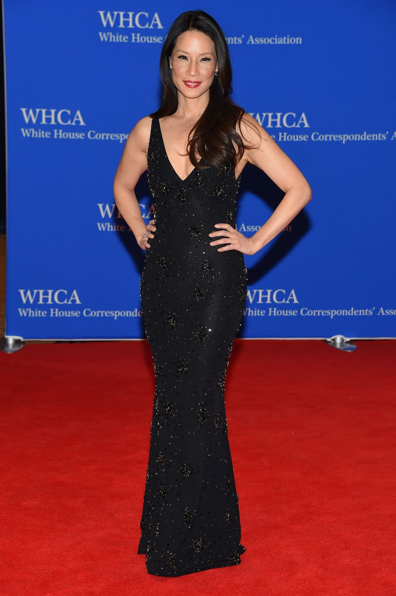 Lucy Liu white house correspondents dinner
