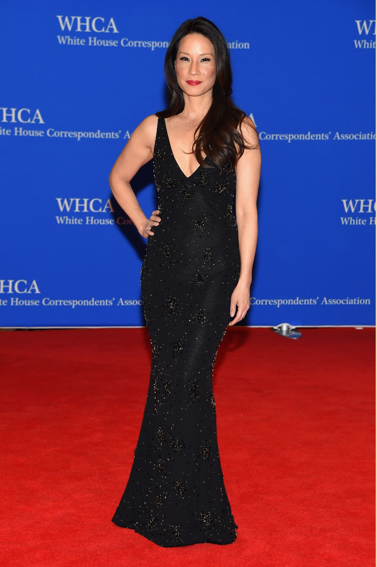 Lucy Liu 2015 White House Correspondents Dinner In