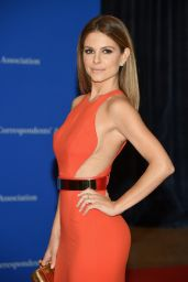 Maria Menounos - 2015 White House Correspondents Dinner in Washington, DC