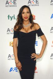 Dania Ramirez – 2015 A&E / Lifetime Networks Upfront in New York City