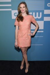 Danielle Panabaker – The CW Network's 2015 Upfront in New York City