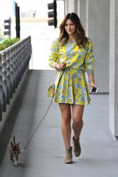Katharine McPhee - With Her Dog Outside an Office Building in LA, May 2015