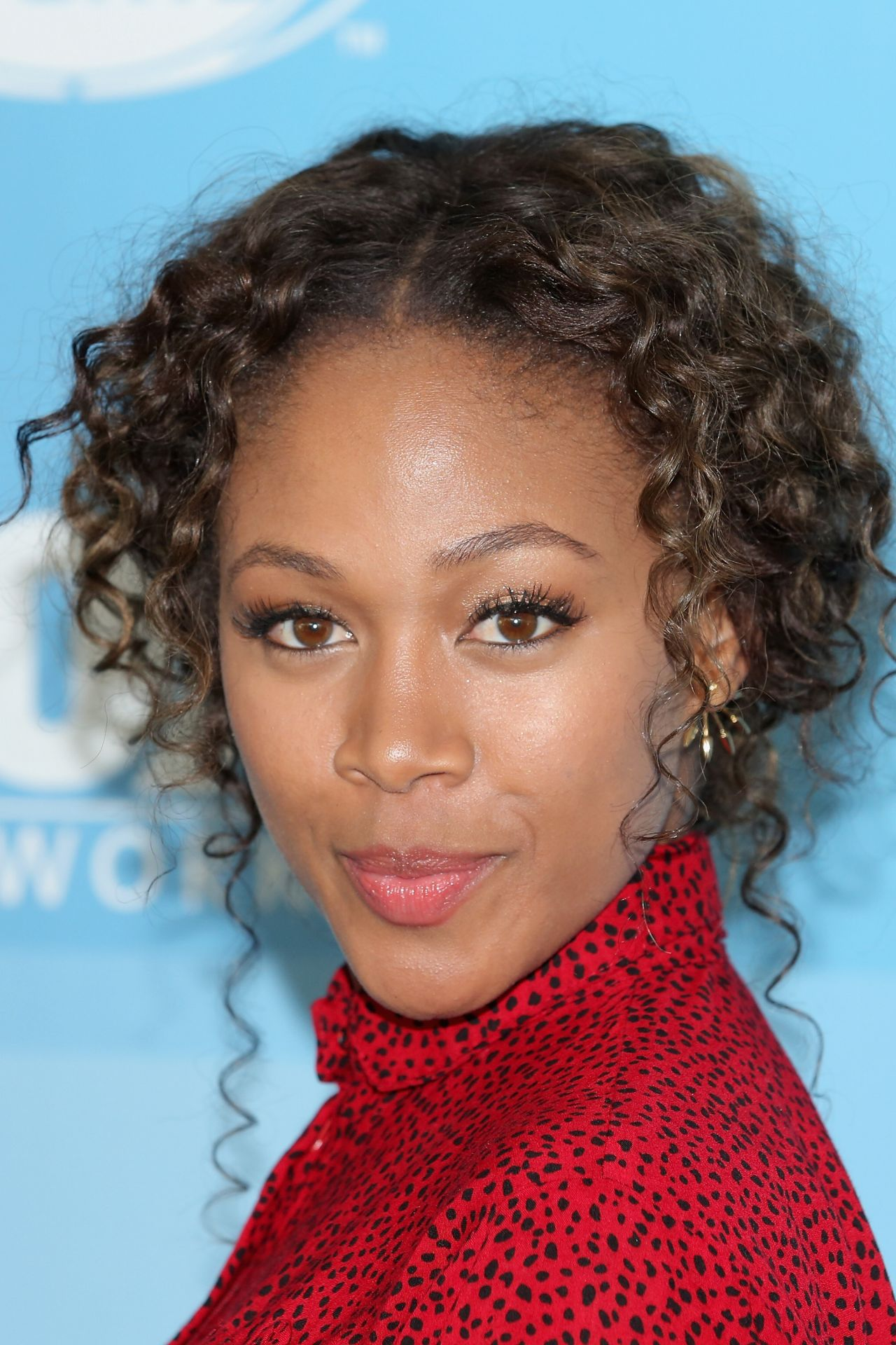 Nicole Beharie Fox Network 2015 Programming Upfront In