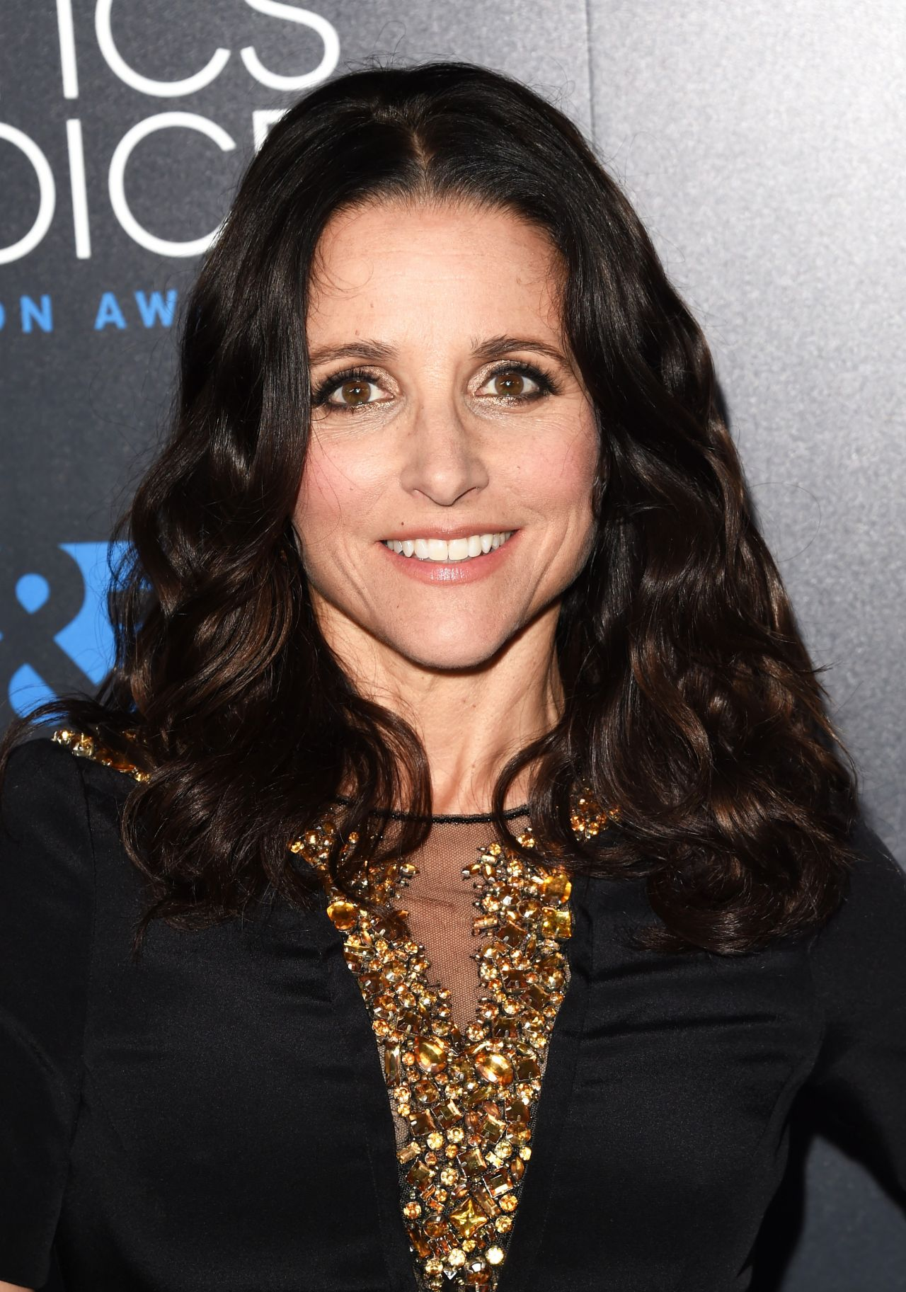 Julia Louis Dreyfus Latest Photos Celebmafia