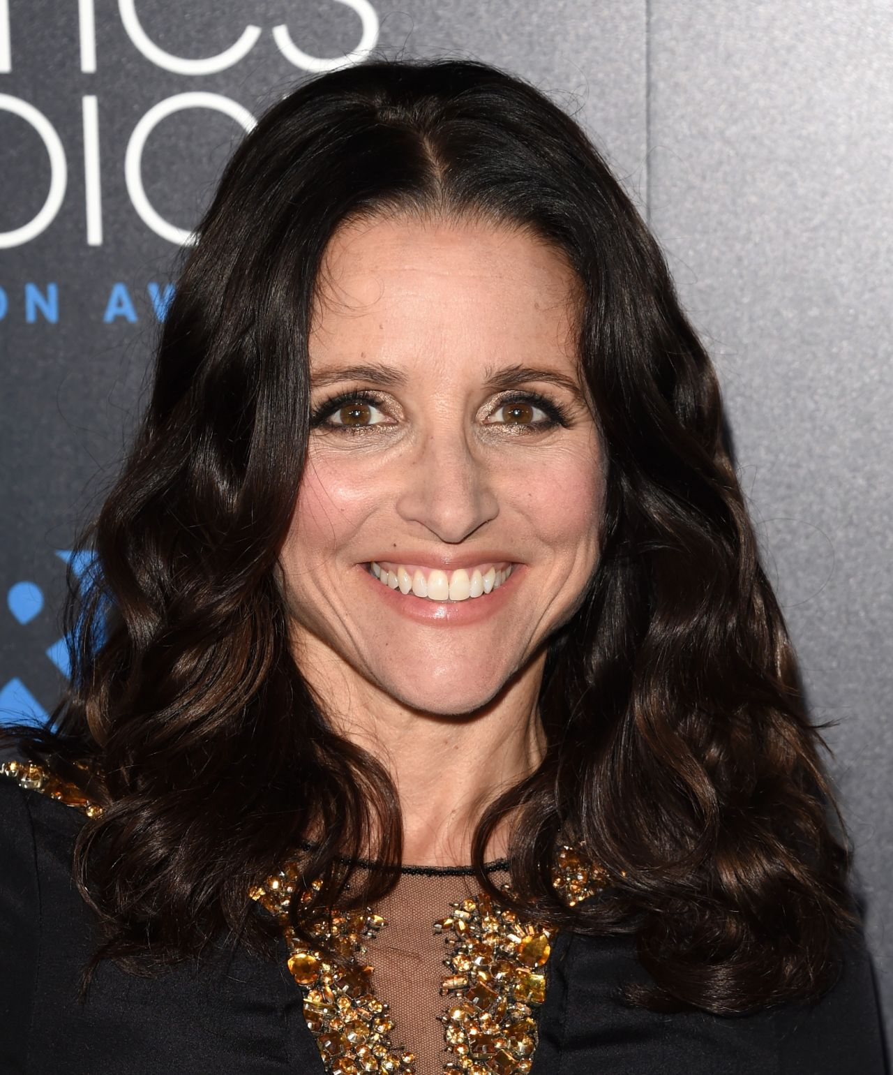 Julia Louis-Dreyfus – 2015 Critics Choice Television ...: http://celebmafia.com/julia-louis-dreyfus-2015-critics-choice-television-awards-in-beverly-hills-332014/