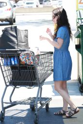 Rachel Bilson - Grocery Shopping at Gelson