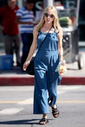 Chloe Sevigny Summer Style - Shopping in LA, July 2015