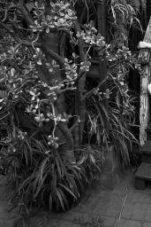 Diane Kruger - Elle Magazine Canada September 2015 Issue