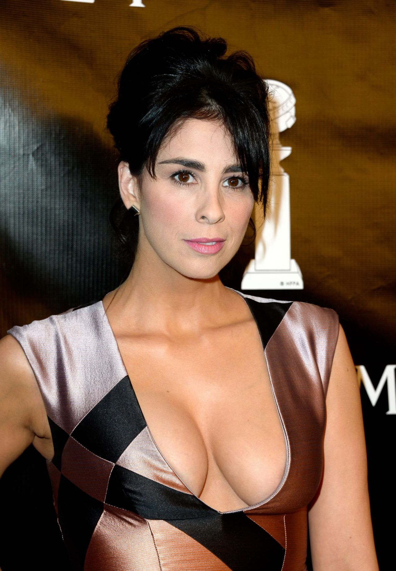 Sarah Silverman 2015 Hollywood Foreign Press Association
