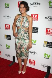 Emmanuelle Chriqui - 2015 Television Industry Advocacy Awards in West Hollywood