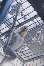 Margot Robbie - Empire Magazine December 2015 Cover and Pics