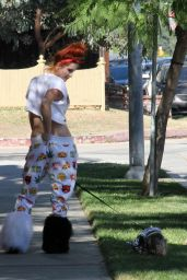 Phoebe Price - Walks Her Dog in Encino, California, November 2015
