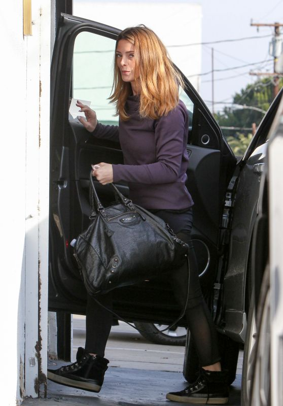 Ashley Greene Gets Out Of a Car - Los Angeles, December 2015