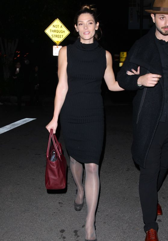 Ashley Greene Night Out Style - at The Nice Guy in West Hollywood 12/11/2015