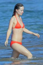 Olivia Wilde in a Bikini - Beach in Hawaii, 12/12/2015