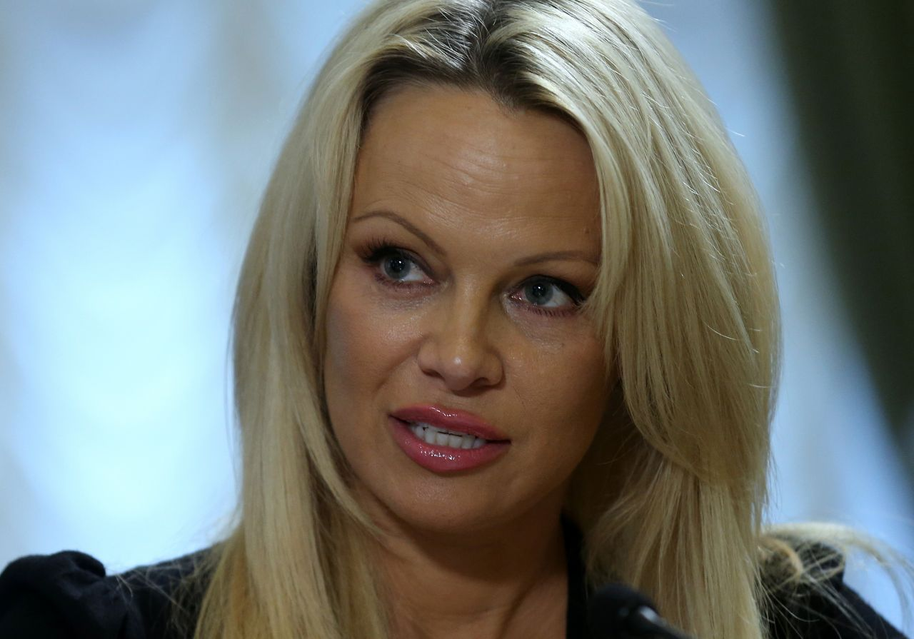 pamela-anderson-international-fund-for-animal-welfare-in-moscow-12-7-2015_9.jpg