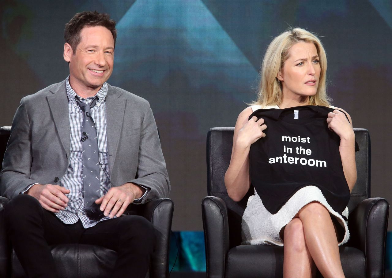 David Duchovny and Gillian Anderson reappear on television next year 12.05.2015 10