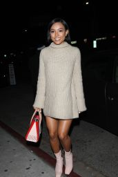Karrueche Tran Night Out Style - Goes To The Nice Guy Club in West Hollywood 1/13/2016