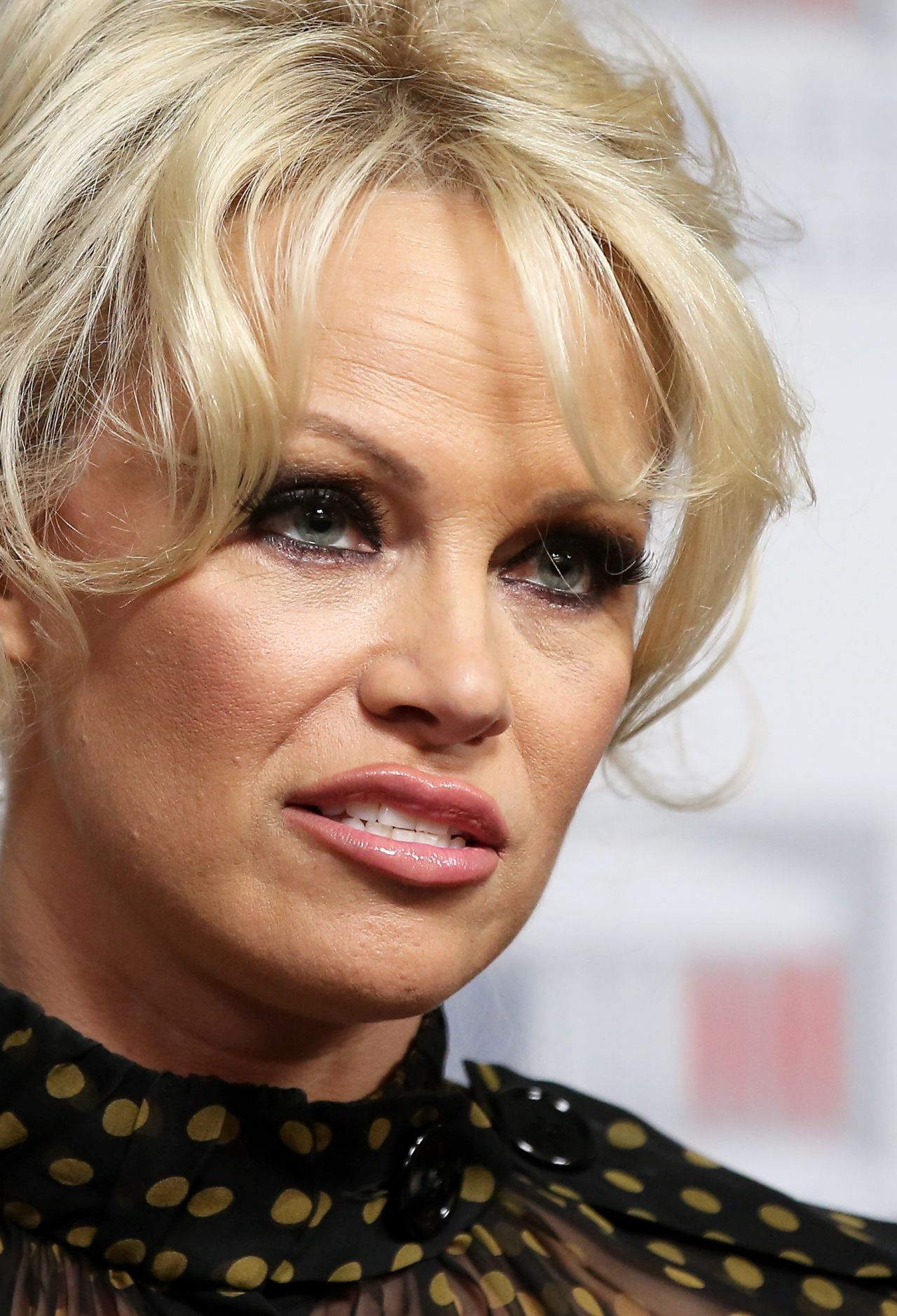 Pamela Anderson - Gives a Press Conference With French ... Pamela Anderson