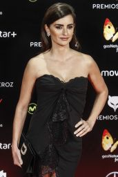 Penelope Cruz - Feroz Awards 2016 in Madrid