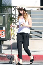 Ashley Tisdale - Out With Her Dog in Toluca Lake 2/7/2016