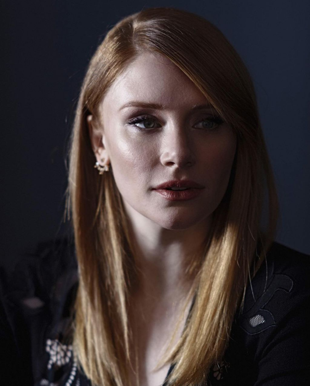 bryce dallas howard filme