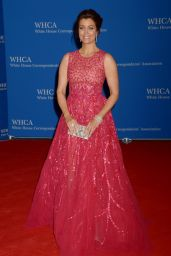 Bellamy Young - White House Correspondents