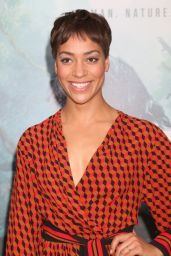 Cush Jumbo – 'The Legend of Tarzan' Premiere at The Dolby Theatre in Hollywood 6/27/2016