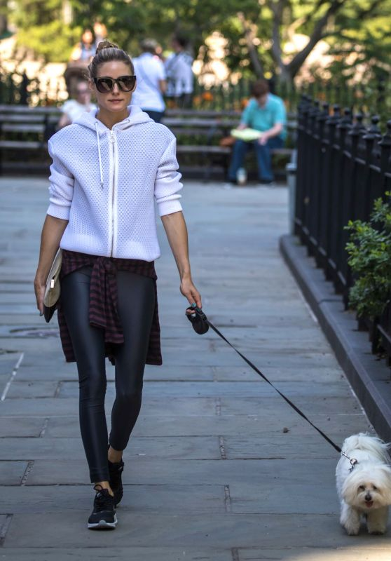 Olivia Palermo - Walking Her Dog in Brooklyn - New York City 7/18/2016