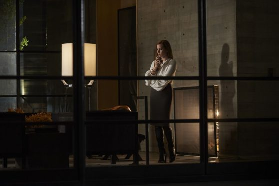 amy-adams-nocturnal-animals-2016-posters-promotional-photos-3