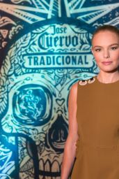 Kate Bosworth - Tradicional Dia de los Muertos Party at The McKittrick Hotel in NYC 11/1/ 2016