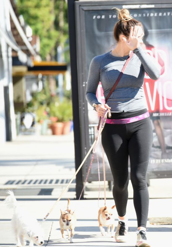 Katharine McPhee in Spandex - Walking Her Dogs in Los Angeles 11/25/ 2016